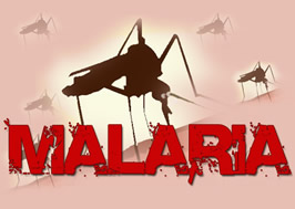 World Malaria Report 2015