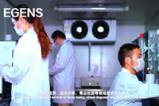 EGENS COVID-19 test operation demo